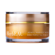 BIWA PERFECT ALL IN ONE GEL