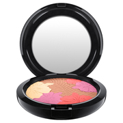 Pearl Matte Face Powder / M・A・C